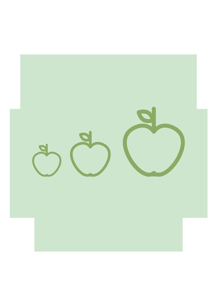 Alimentación por etapas. Nutrición Donostia está formado por un equipo profesional de nutricionistas y dietistas que te ayudaran a alcanzar tus objetivos mediante la alimentación por etapas.