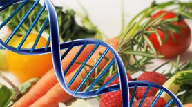 La psiconutrición y la nutrigenética son dos de las especialidades de Nutrición Donostia, tu consulta en el barrio de amara