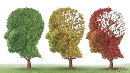 beneficios de la dieta mediterránea para prevenir el deterioro cognitivo. articulo de vanessa blazquez, dietista, nutricionista y tecnologa de los alimentos