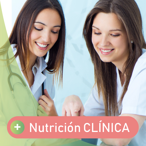 si buscas una consulta dietista y nutricionista en san sebastian especialista en nutricion clinica llama a vanessa blazquez, tecnologa de los alimentos y profesional de la nutricion.