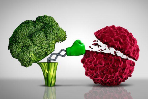 como fortalecer el sistema inmune frente a los virus y las bacterias en epocas de covid 19 y confinamiento